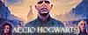 Accio Hogwarts [Confirmación] Normal 100x40-34cb6c4